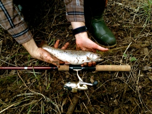 First trout of the year!